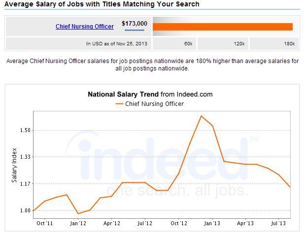 chief nursing ceo salary